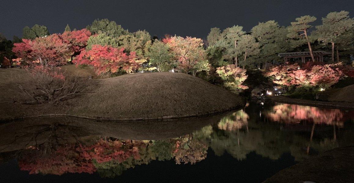 梅小路公園・朱雀の庭の紅葉ライトアップ 見頃 2018年11月27日 撮影:MKタクシー