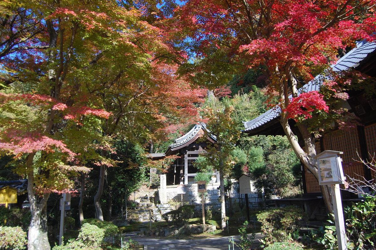 清閑寺本堂の紅葉 見頃 2008年11月26日 撮影:MKタクシー