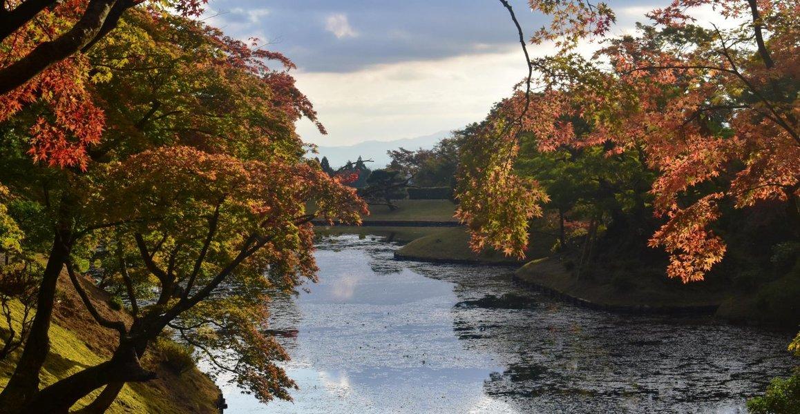 上離宮・楓橋から見た浴龍池の紅葉 色づきはじめ 2018年11月4日 撮影:MKタクシー