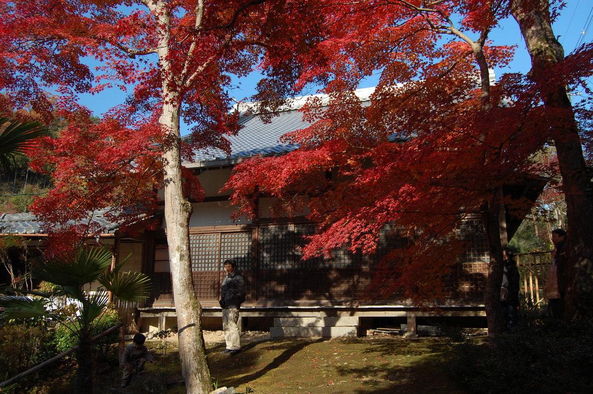 吟松寺の紅葉 見頃 2007年12月1日 撮影:MKタクシー