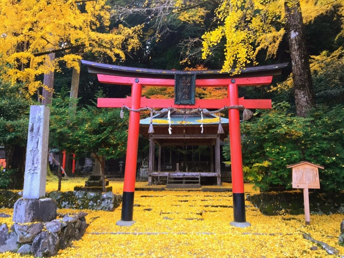岩戸落葉神社の黄葉 見頃 2018年11月23日 撮影:MKタクシー