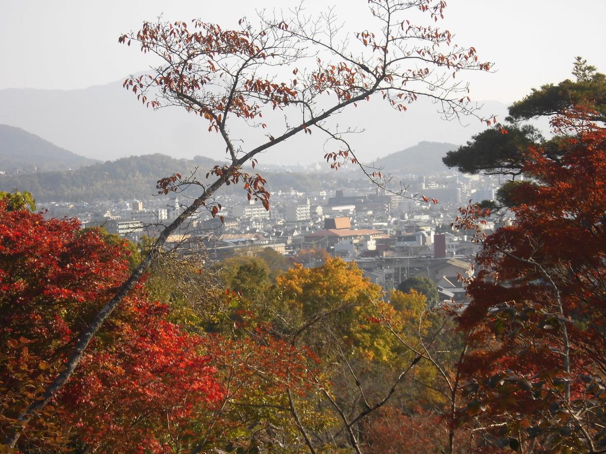 亀山公園の紅葉 見頃近し 2019年11月13日 撮影:MKタクシー