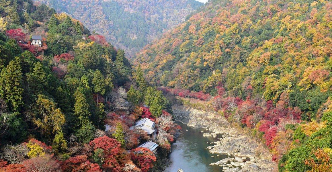 亀山公園・保津峡展望台の紅葉 見頃 2018年12月1日 撮影:MKタクシー