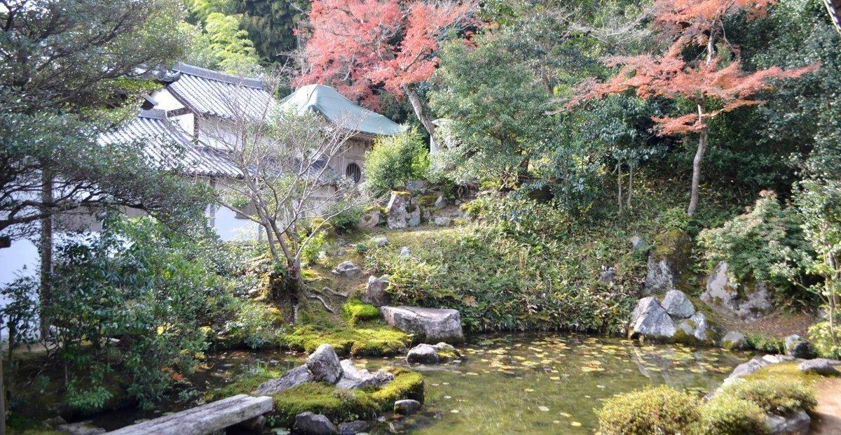 浄住寺・方丈庭園の紅葉 見頃 2017年11月25日 撮影:MKタクシー