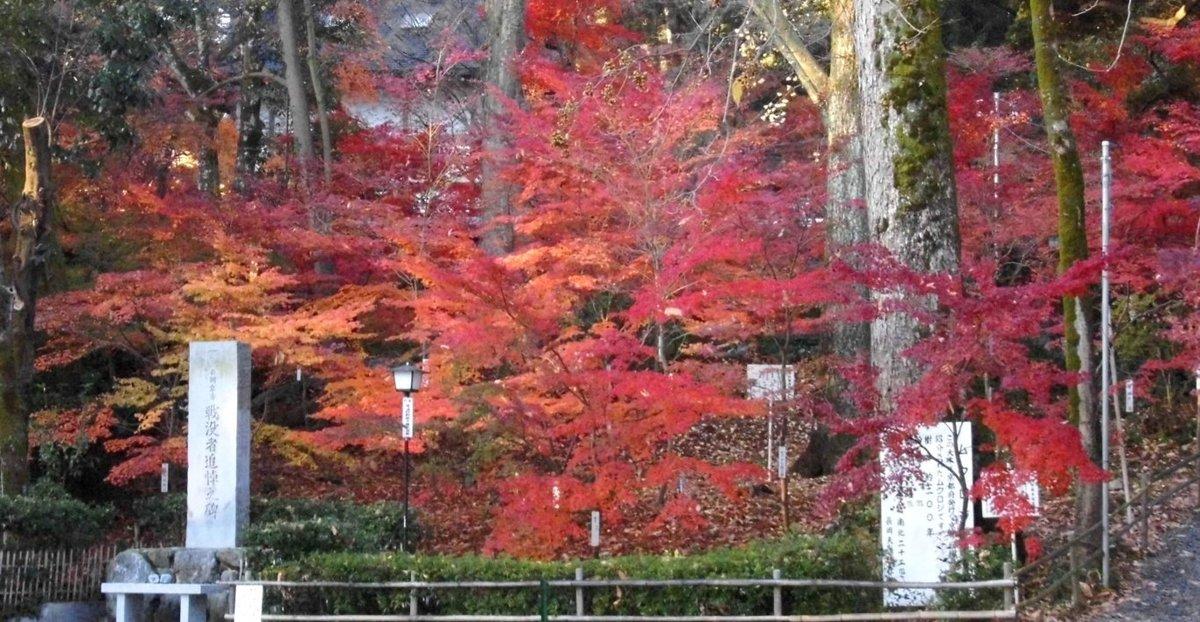 長岡天満宮・錦景苑の紅葉 見頃 2016年12月3日 撮影:MKタクシー