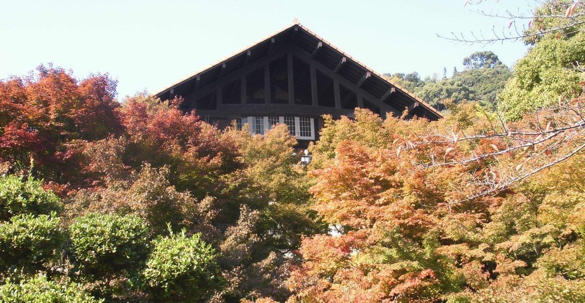 大山崎山荘美術館の紅葉 色づきはじめ 2016年11月5日 撮影:MKタクシー