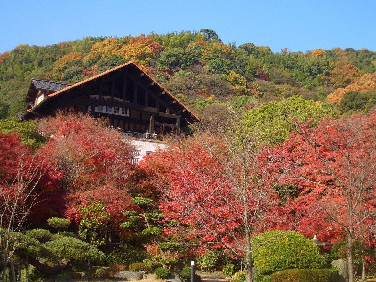 大山崎山荘美術館の紅葉 見頃 2008年12月2日 撮影:MKタクシー