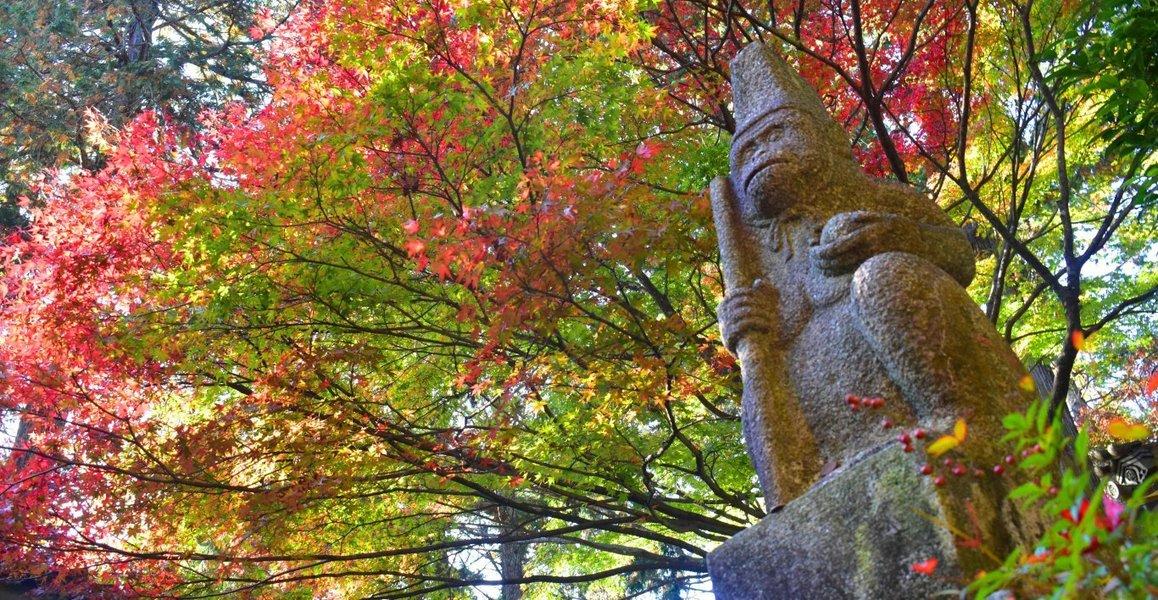 猿丸神社の紅葉 2018年11月11日 撮影:MKタクシー