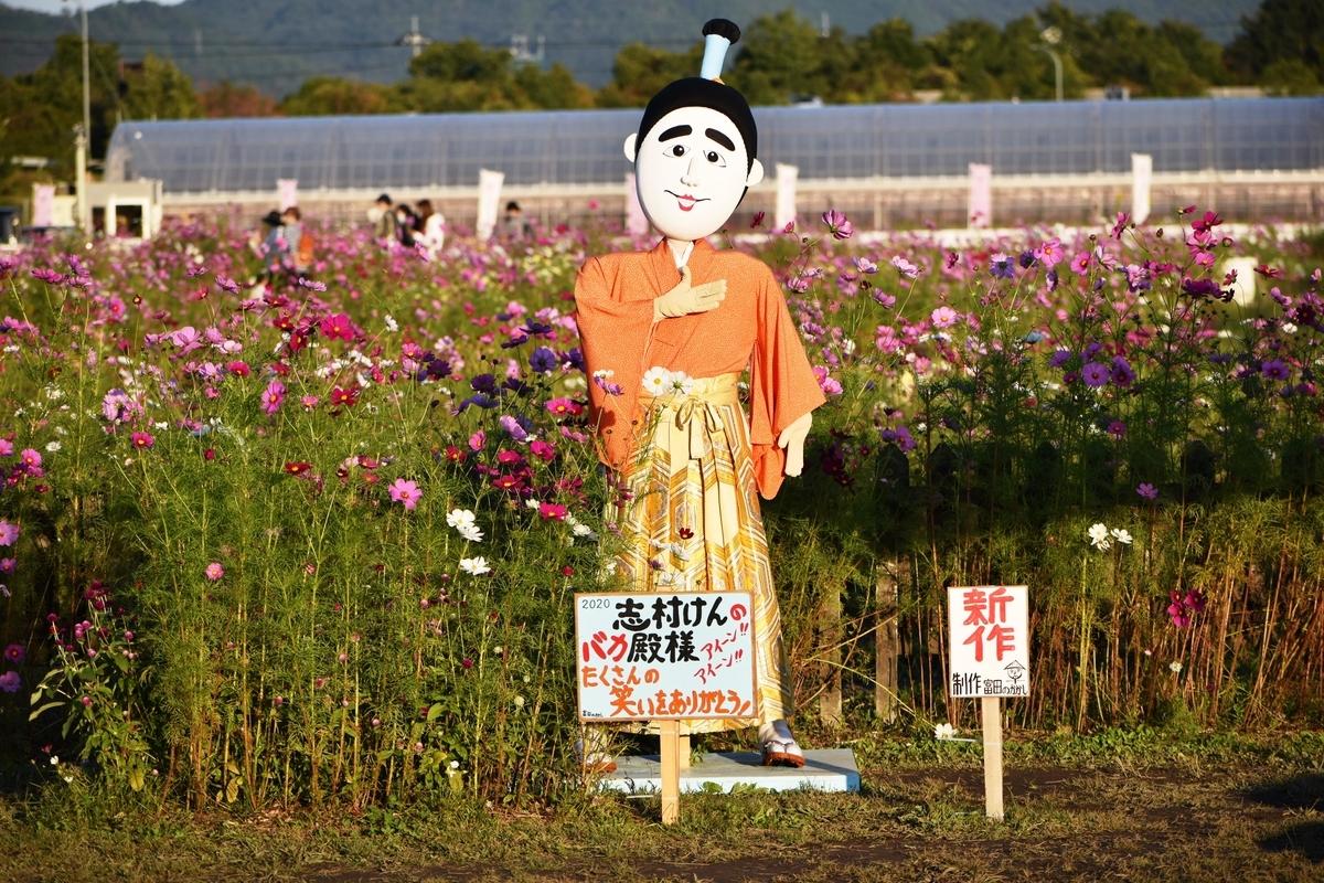 亀岡夢コスモス園 創作かかし 2020年10月20日 撮影:MKタクシー