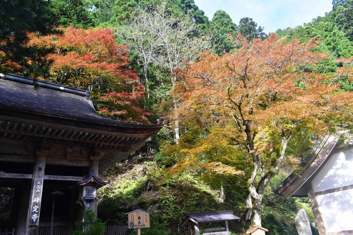 峰定寺の紅葉 見頃 11月10日 撮影:MKタクシー