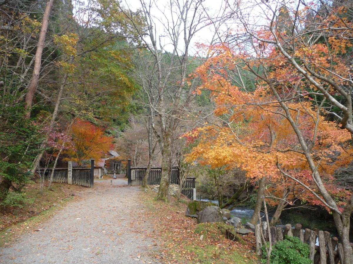 峯定寺の紅葉 散りはじめ 2009年11月15日 撮影:MKタクシー