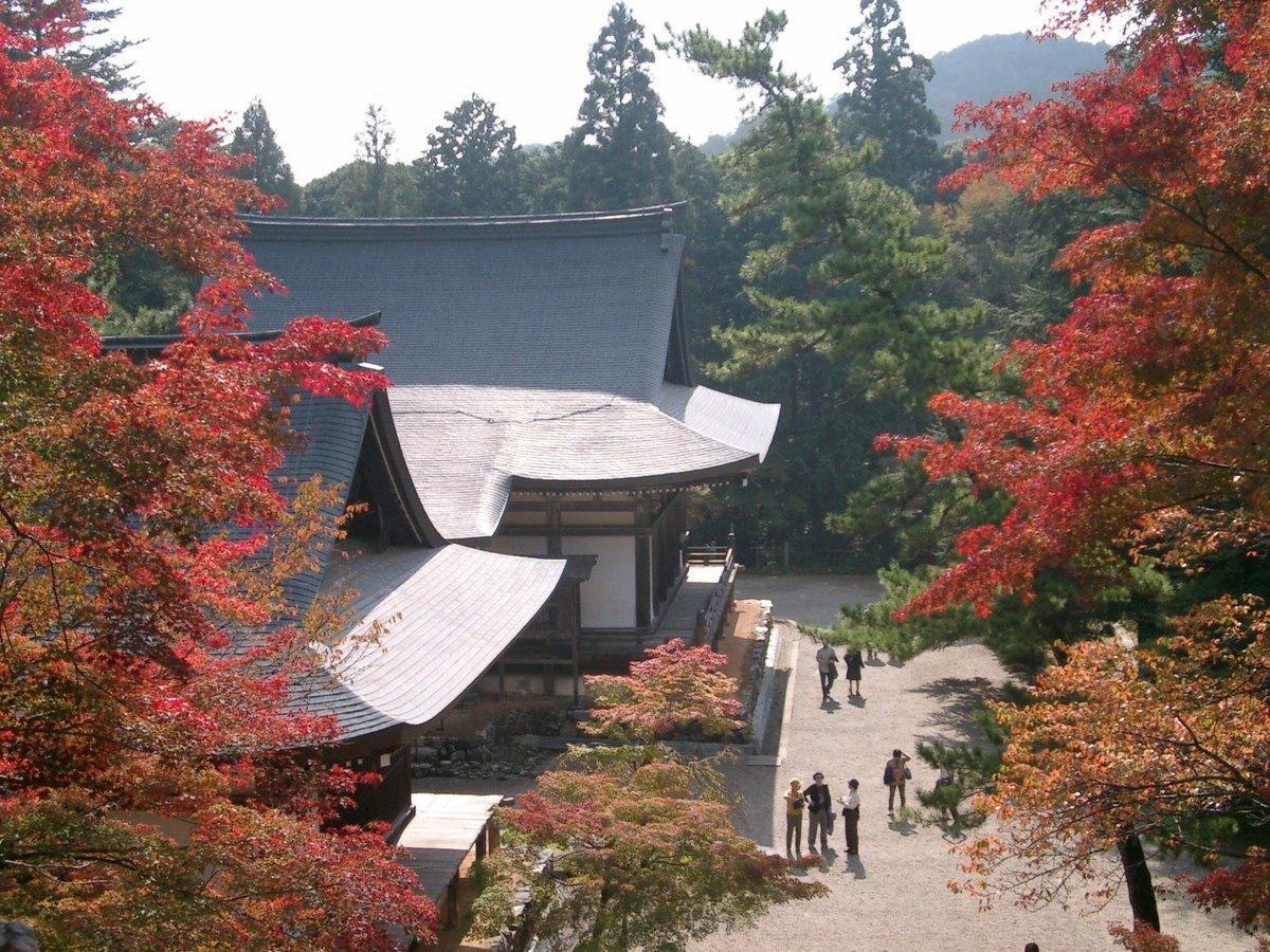 神護寺・金堂前の紅葉 見頃 2005年10月30日 撮影:MKタクシー