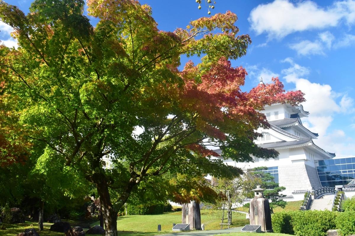 園部公園の紅葉 色づきはじめ 2018年10月6日 撮影:MKタクシー