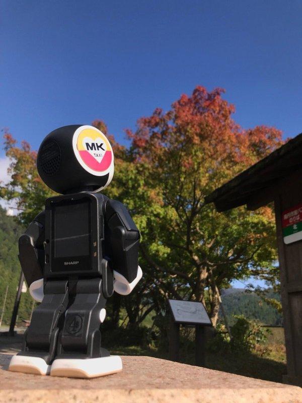 ロボホンと美山かやぶきの里の紅葉 色づきはじめ 2018年10月19日 撮影:MKタクシー