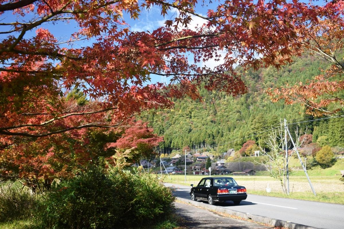 美山かやぶきの里の紅葉とMKタクシー 見頃 2019年11月10日 撮影:MKタクシー