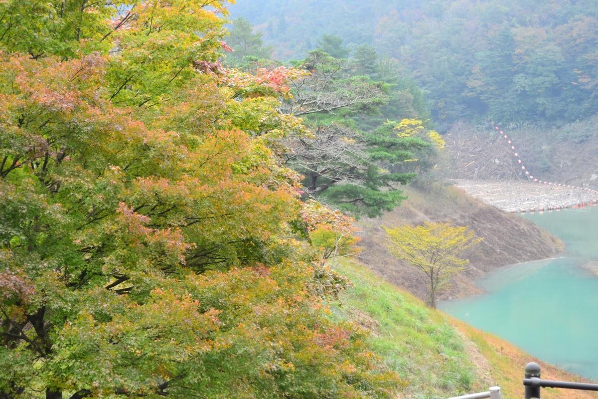 大野ダム公園の紅葉 色づきはじめ 2017年11月3日 撮影:MKタクシー