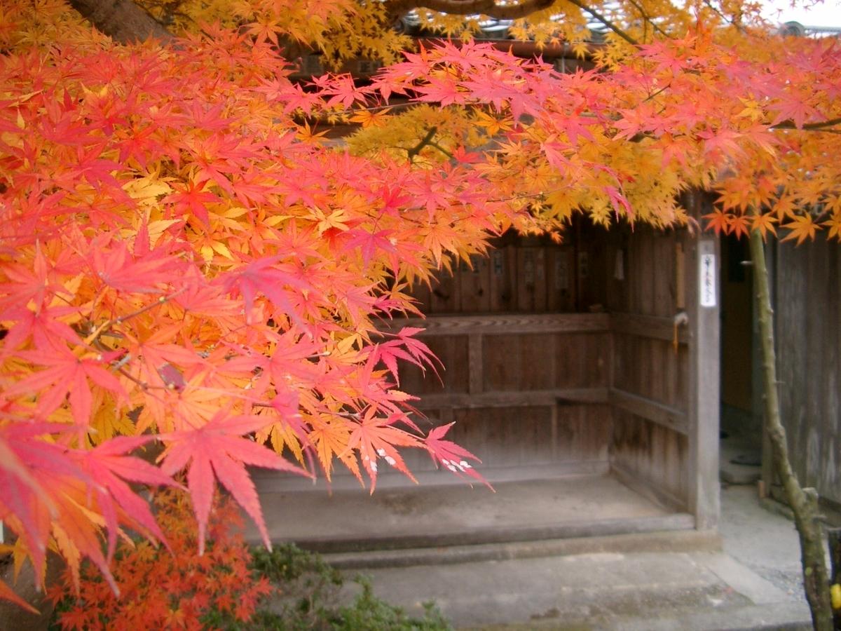穴太寺の紅葉 見頃 2005年11月30日 撮影:MKタクシー