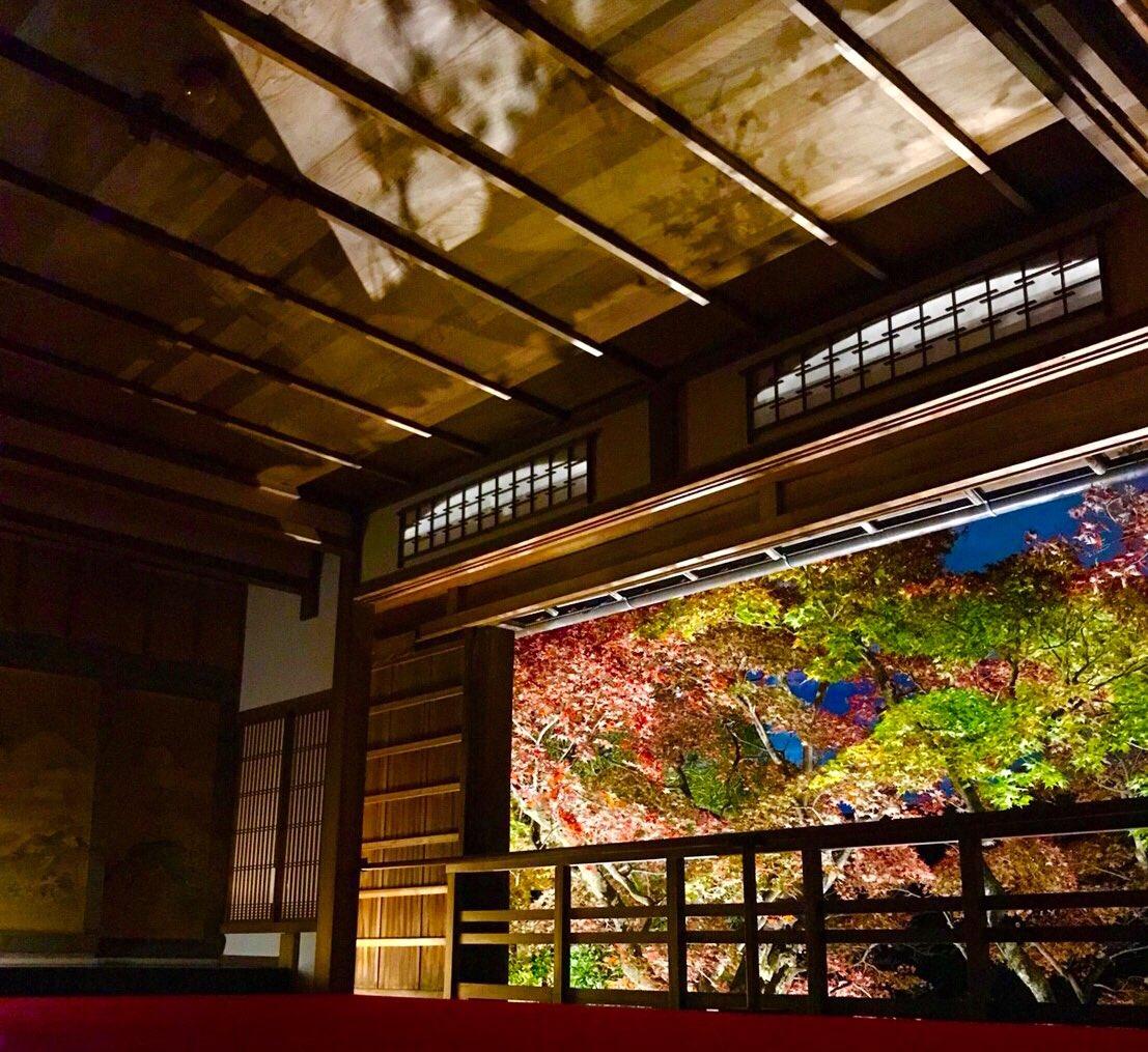 柳谷楊谷寺・上書院の紅葉ライトアップ 2018年11月25日 撮影:MKタクシー