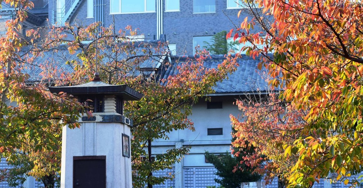 円山公園・ラジオ塔と桜紅葉 見頃近し 2018年10月30日 撮影:MKタクシー