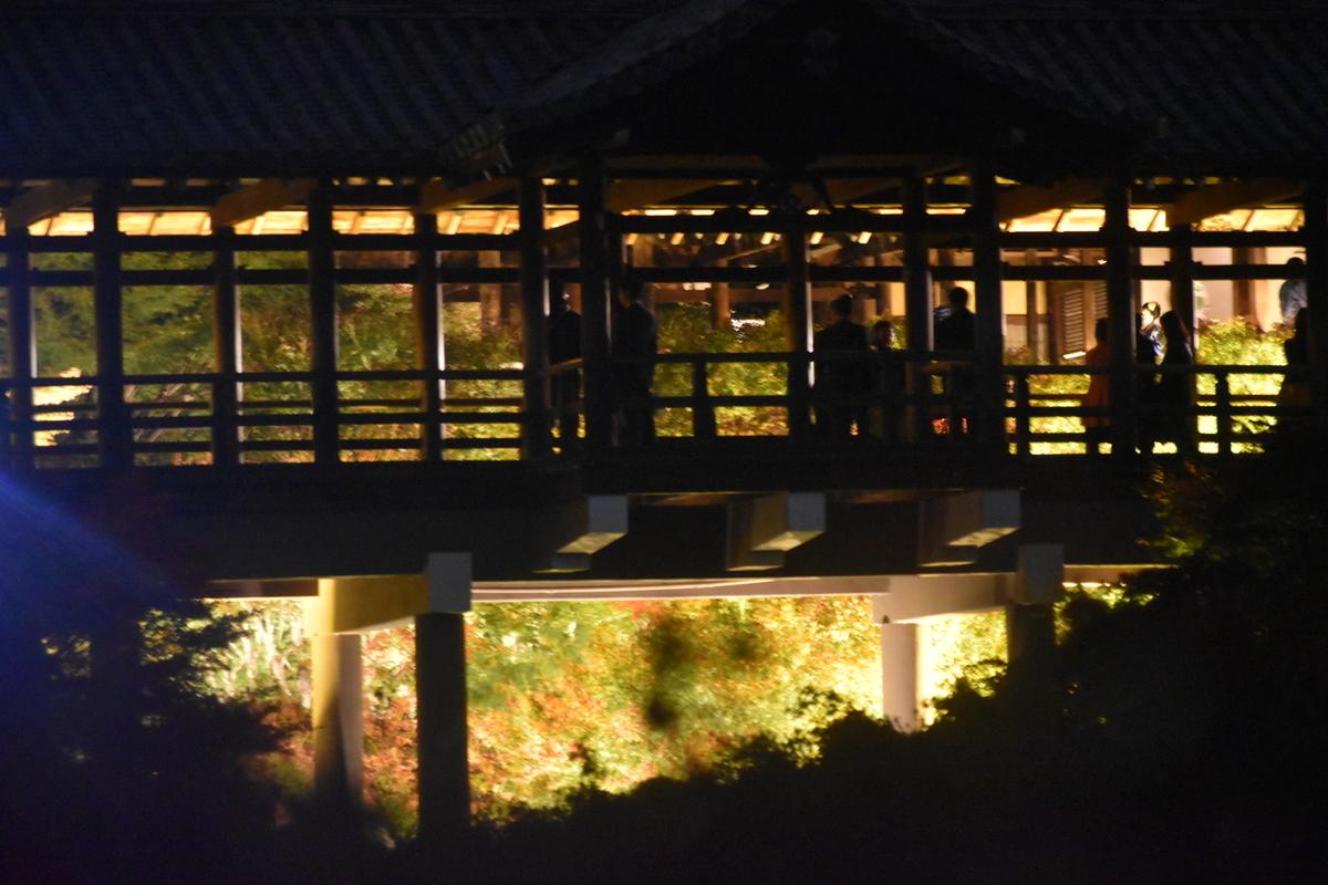 2018年11月20日 限定公開で夜間ライトアップされる通天橋を臥雲橋より 撮影:MKタクシー