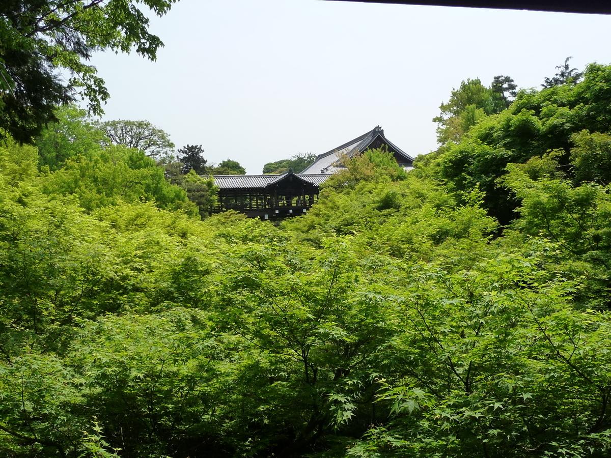 2009年5月2日 臥雲橋より通天橋 撮影:MKタクシー