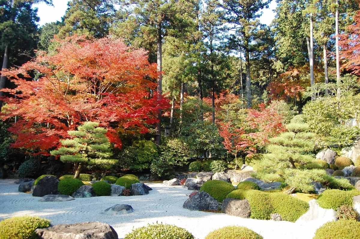 三室戸寺・石庭の紅葉 見頃 2007年11月24日 撮影:MKタクシー