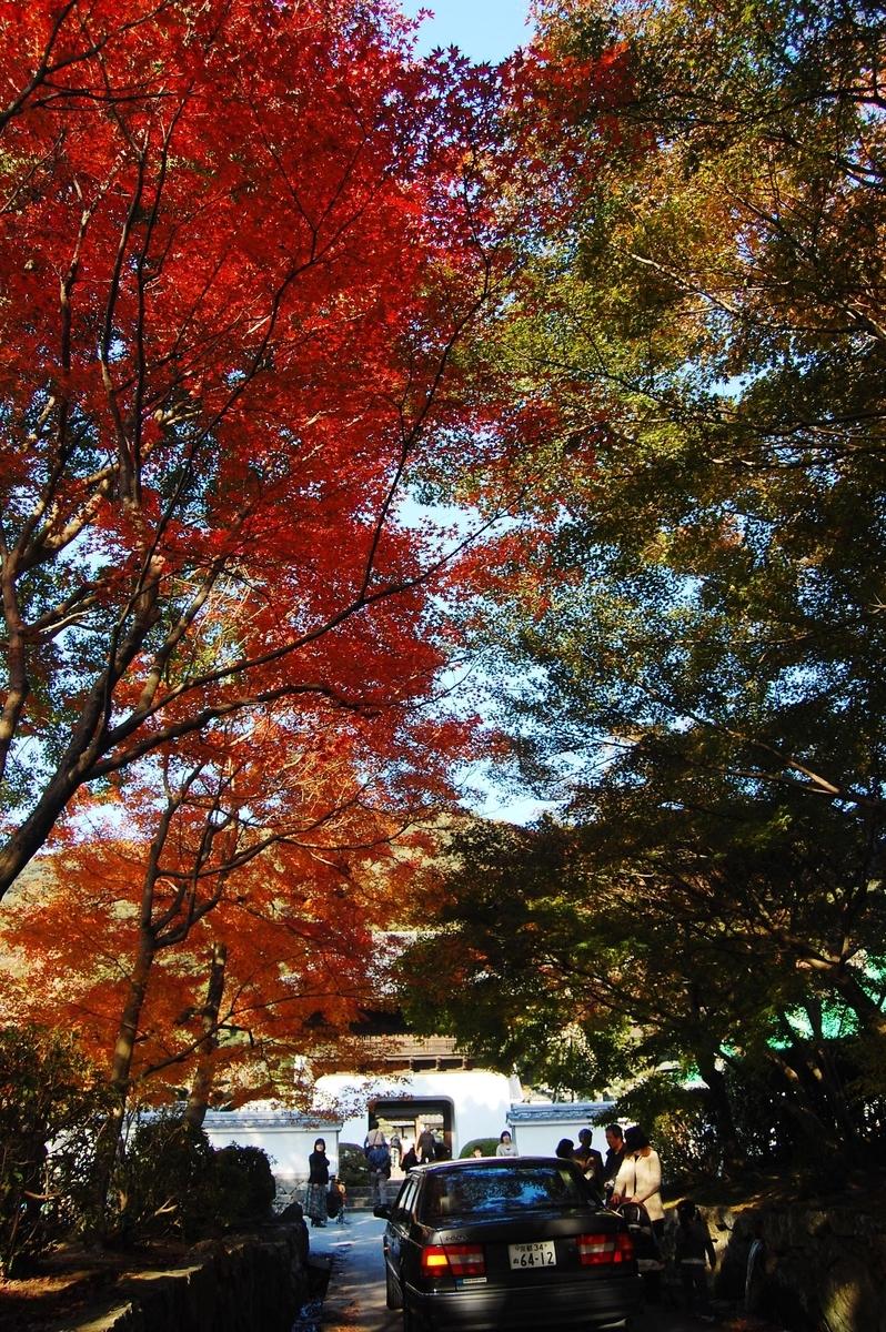 興聖寺・琴坂の紅葉 見頃 2007年11月24日 撮影:MKタクシー