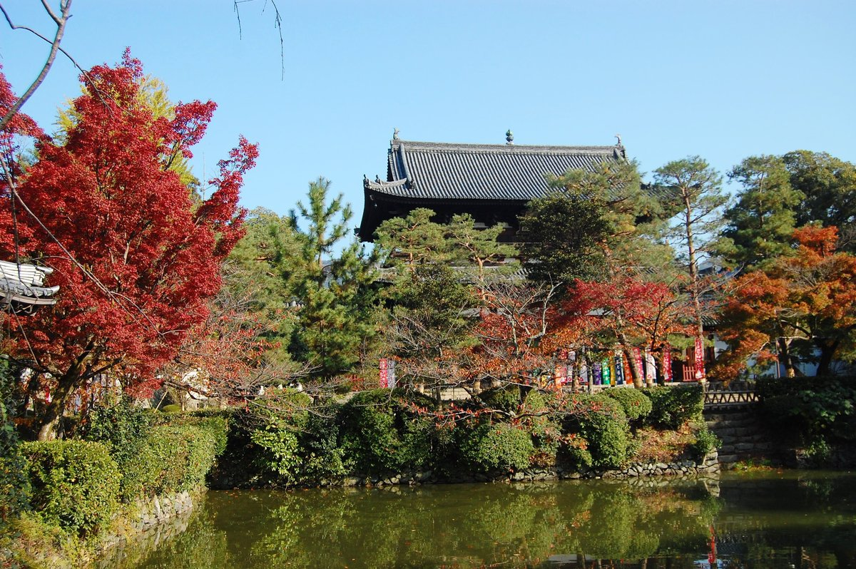 萬福寺・山門の紅葉 見頃 2007年11月24日 撮影:MKタクシー