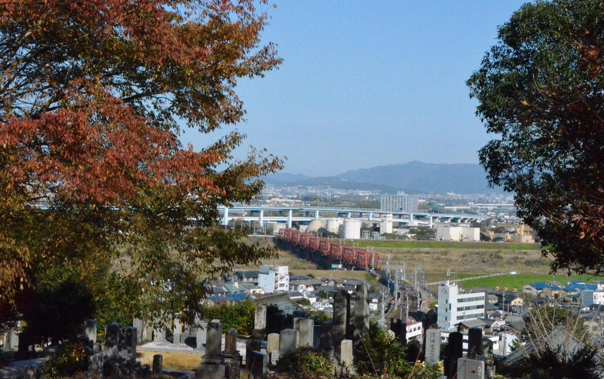 神応寺社・墓地前の紅葉 見頃 2017年12月3日 撮影:MKタクシー