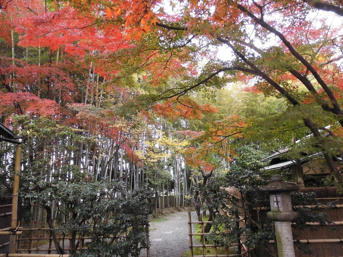 松花堂庭園・梅隠前の紅葉 見頃 2016年11月20日 撮影:MKタクシー