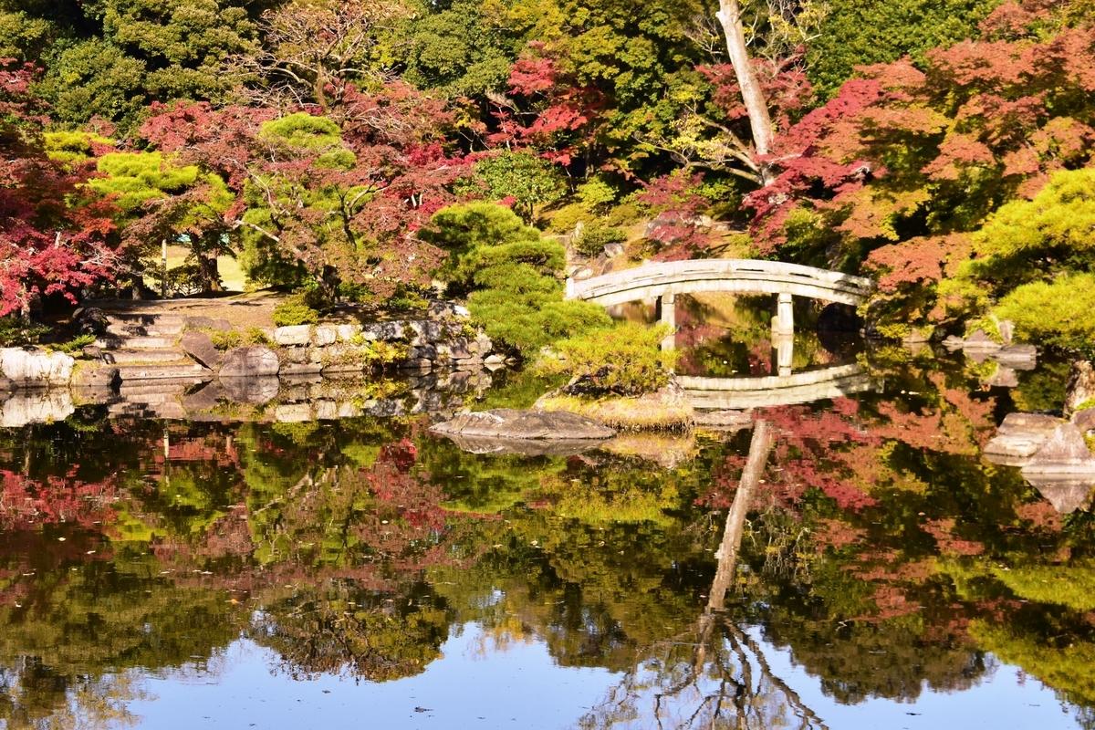 仙洞御所・南池の紅葉 見頃 2020年11月12日 撮影:MKタクシー