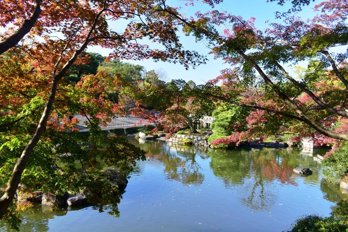 京都仙洞御所・南池の紅葉 見頃 2020年11月12日 撮影:MKタクシー