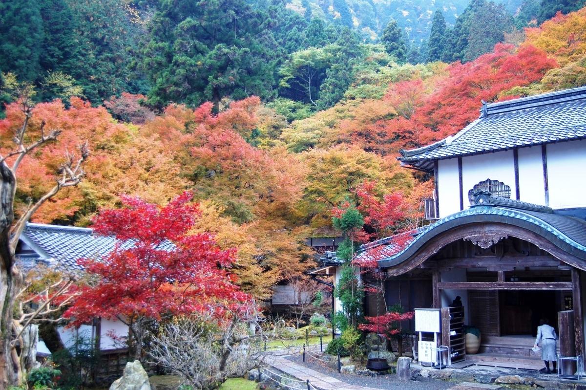 古知谷阿弥陀寺の紅葉 見頃 2007年11月18日 撮影:MKタクシー