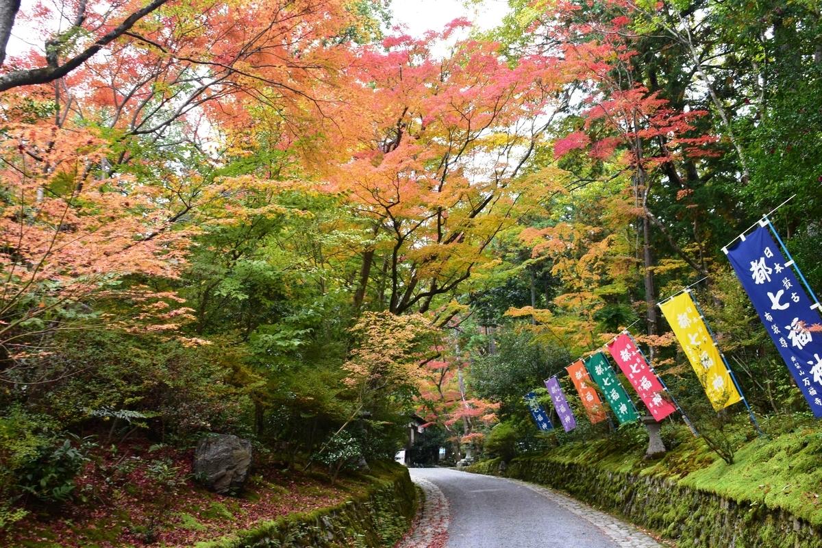赤山禅院の紅葉 見頃 2020年11月12日 撮影:MKタクシー