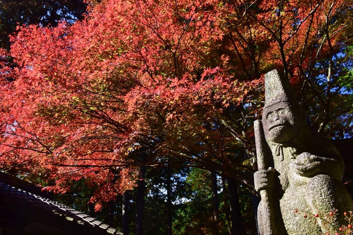 蝉丸神社・狛猿と紅葉 見頃 2020年11月14日 撮影:MKタクシー