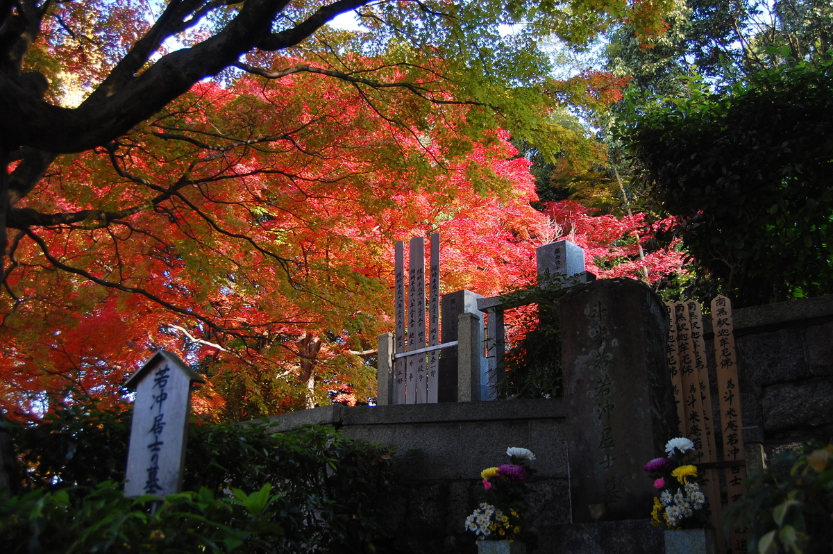 石峰寺の伊藤若冲墓と紅葉 見頃 2007年11月24日 撮影:MKタクシー