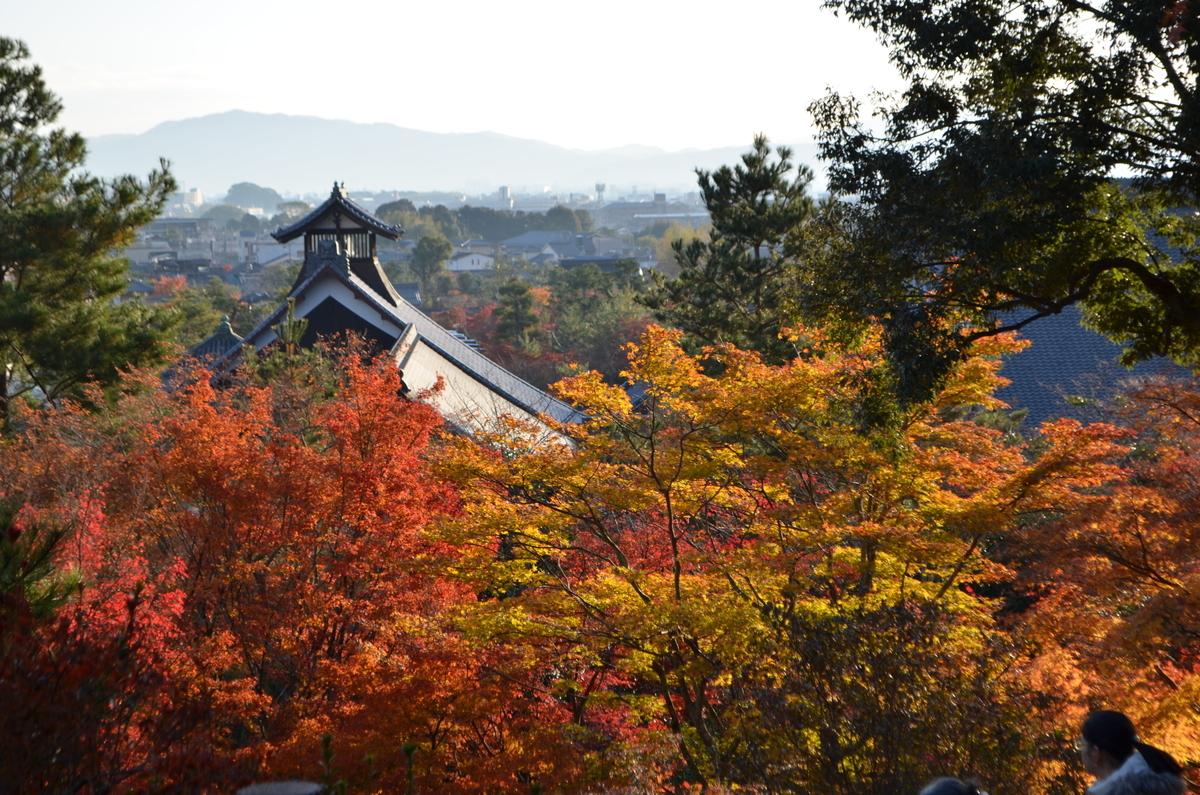 7:53 天龍寺の早朝参拝 望京の丘 2017年11月25日 撮影:MKタクシー