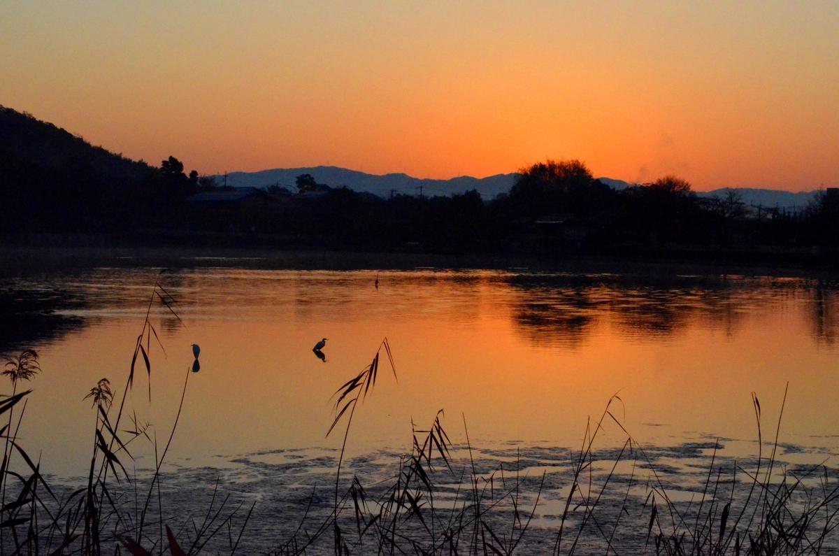 日の出直前の静寂に包まれた広沢池 2017年11月28日 撮影:MKタクシー