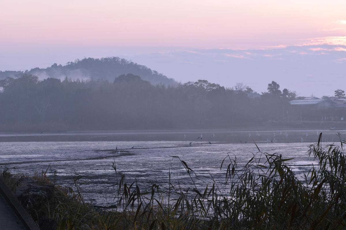 広沢池の夜明け 2017年11月28日 撮影:MKタクシー