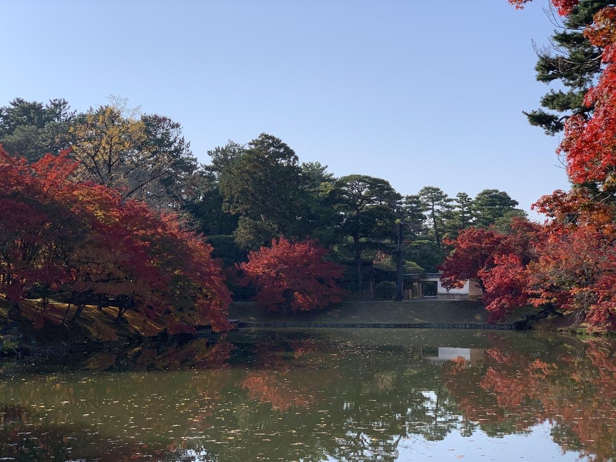 京都仙洞御所・南池の紅葉 見頃 2020年11月18日 撮影:MKタクシー