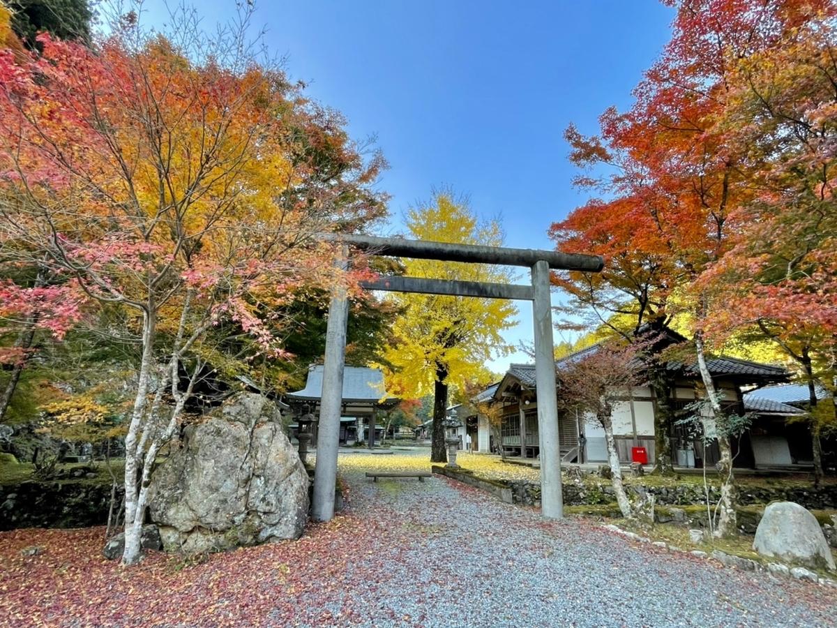 多治神社(日吉)の紅葉 見頃 2020年11月18日 撮影:MKタクシー