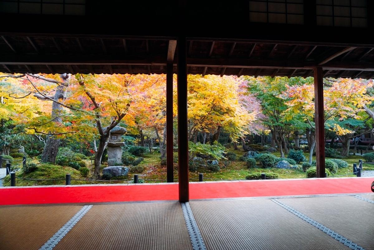 圓光寺・十牛の庭の紅葉 見頃 2020年11月16日 撮影:MKタクシー