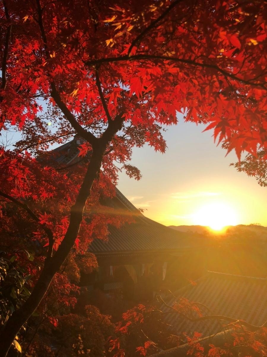 永観堂の紅葉 見頃 2019年11月21日 撮影:MKタクシー