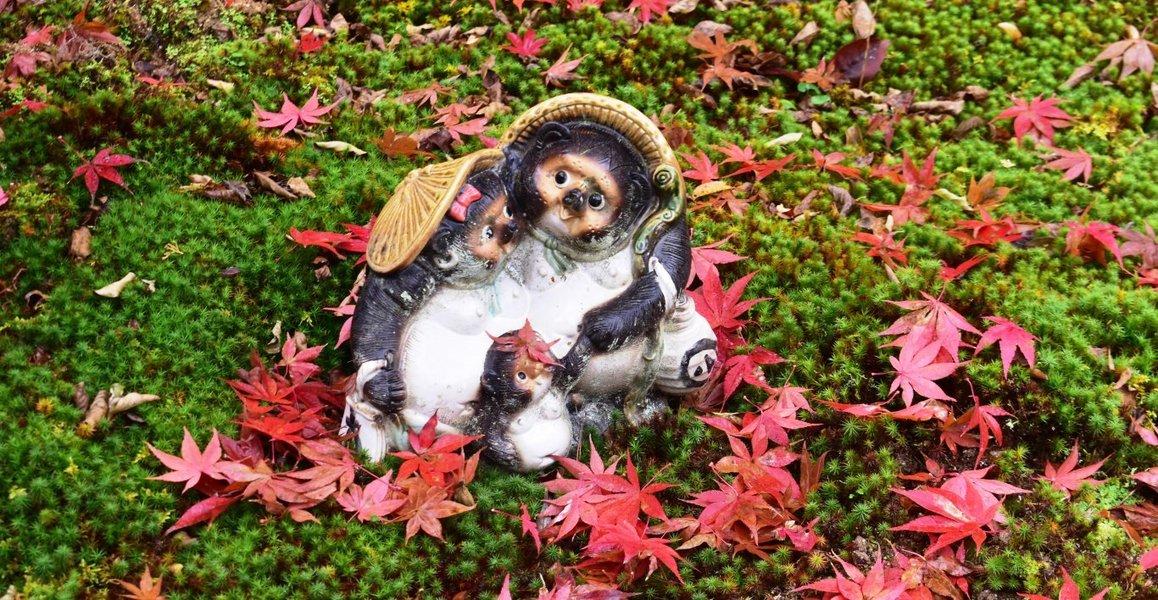 南禅寺・最勝院の散紅葉 2019年11月30日 撮影:MKタクシー