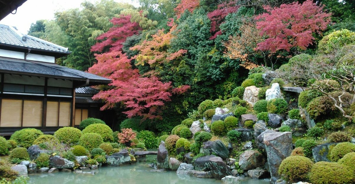智積院・名勝庭園の紅葉 見頃 2014年11月25日 撮影:MKタクシー