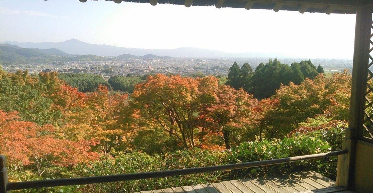 大河内山荘・展望台からの紅葉と京都盆地遠望 色づきはじめ 2016年10月19日 撮影:MKタクシー