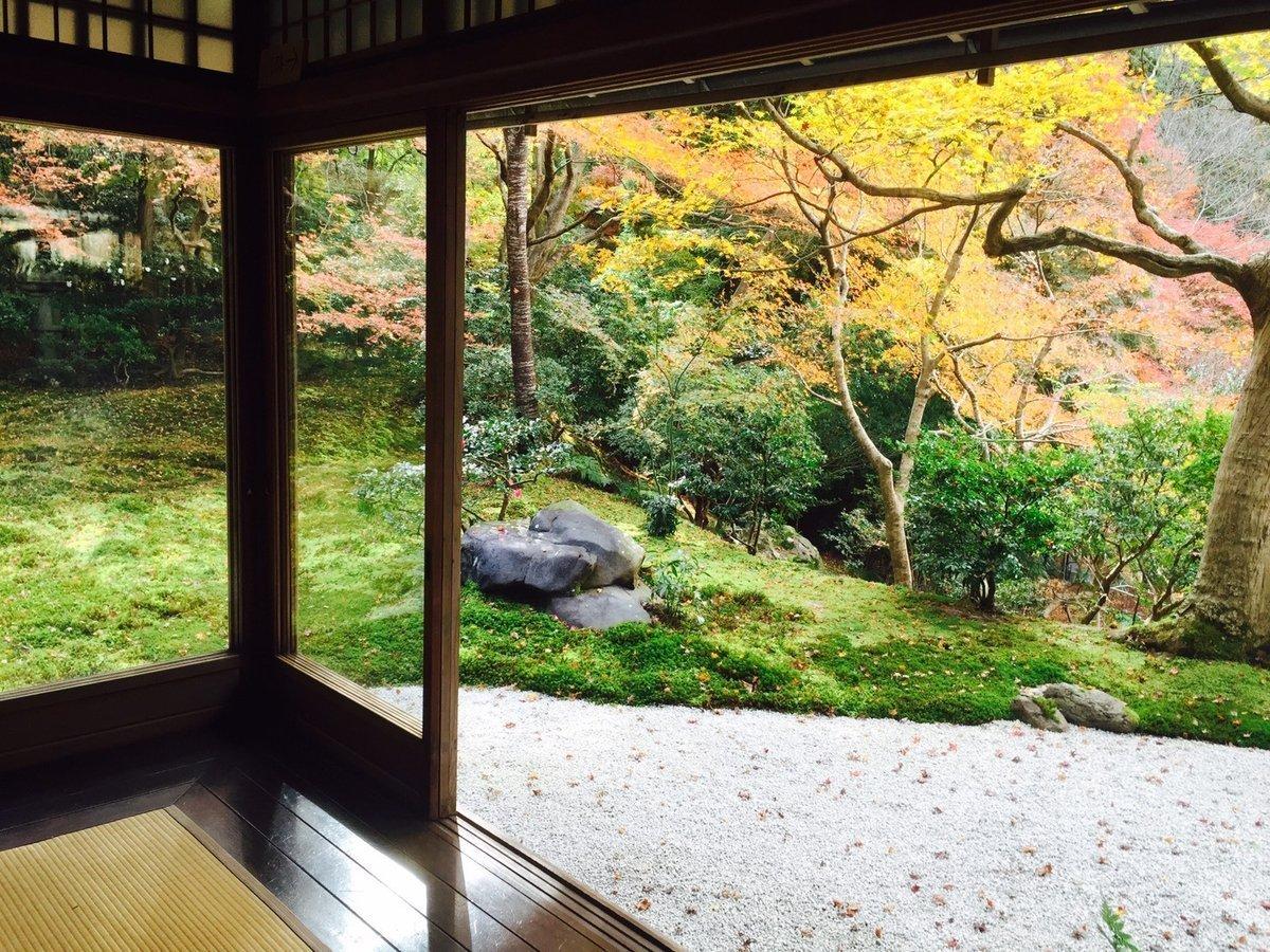 瑠璃光院・瑠璃の庭の紅葉 見頃 2016年11月23日 撮影:MKタクシー