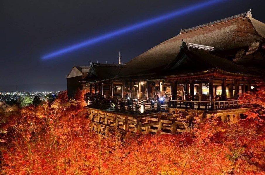 清水寺の紅葉ライトアップ 見頃 2014年12月1日 撮影:MKタクシー