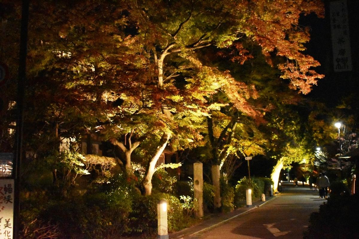 茶業会館前・宇治灯りのみち 紅葉ライトアップ 見頃近し 2020年11月22日 撮影:MKタクシー