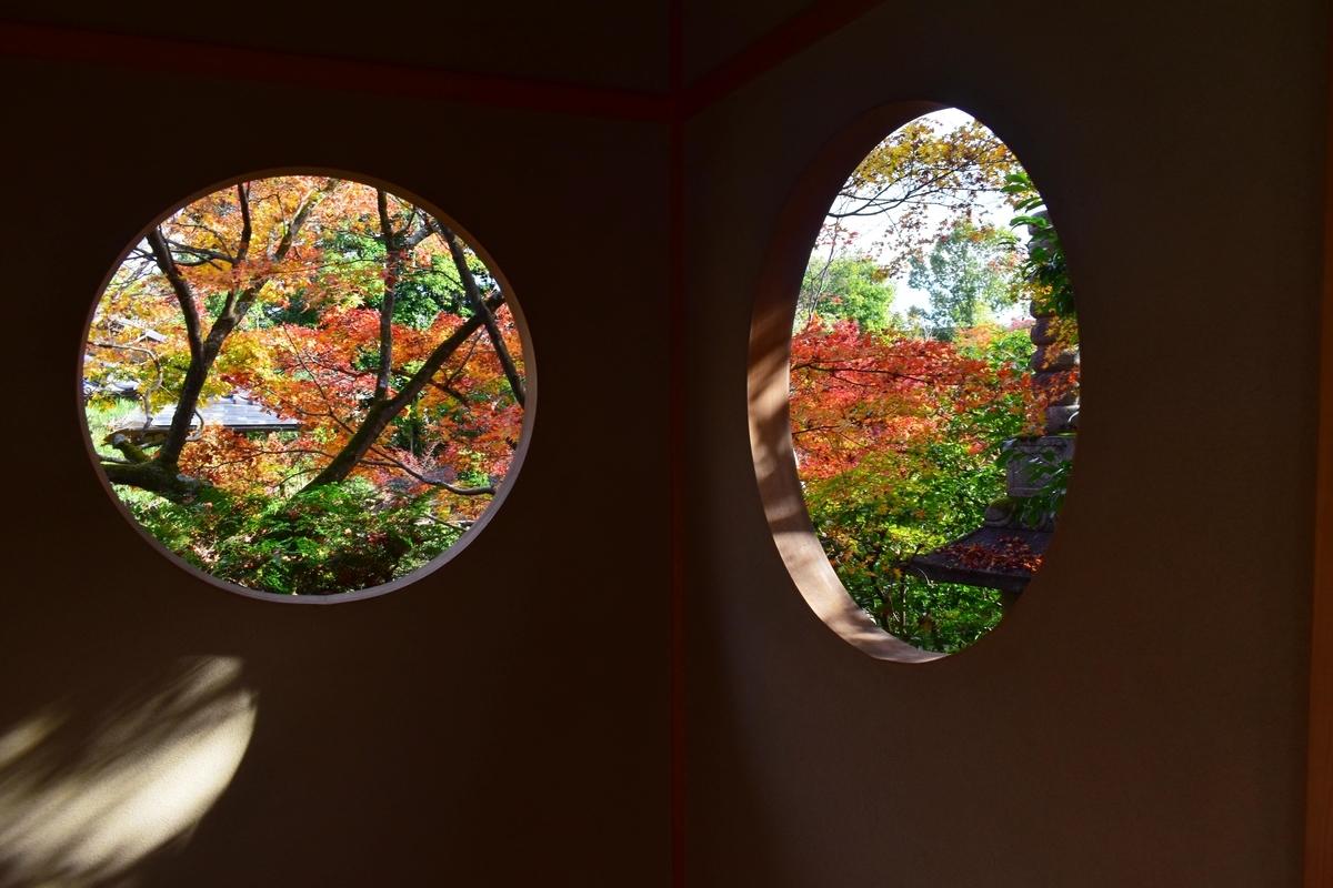 善法律寺・客殿の「もみじの円窓」 見頃 2020年11月22日 撮影:MKタクシー